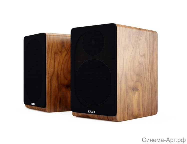 ACOUSTIC ENERGY AE 100 Walnut
